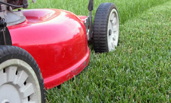 Lawn Care in Littleton CO Lawn Care Services in Littleton CO Quality Lawn Care in Littleton CO